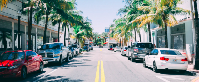 Street in Florida with palm trees
